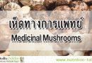 เห็ดทางการแพทย์ (Medicinal Mushrooms) คืออะไร