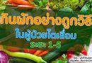 กินผักอย่างถูกวิธี ในผู้ป่วยไตเสื่อม ระยะ 1-5